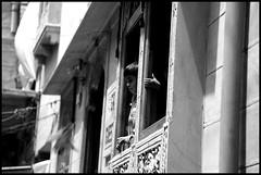 hi (www.infografiagijon.es) Tags: people india asturias aviles canon5d fotografia oviedo junio gijon 2009 xixon rajasthan markii rajastan asturies infografia astur infografias infoarquitectura hernancad wwwinfografiagijones infografiagijon