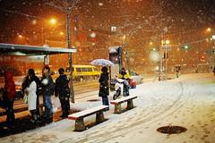 2205/1719*'^+z] (june1777) Tags: street light snow night 35mm canon t eos f14 snap 1600 clear e seoul 5d ef shinnaedong