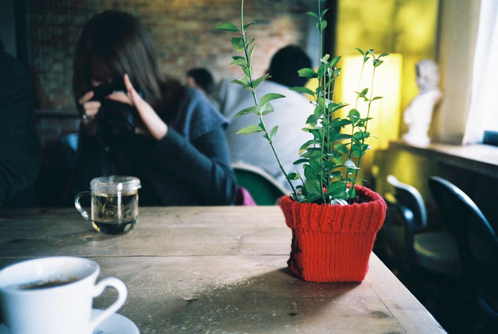 sara @ cafe *