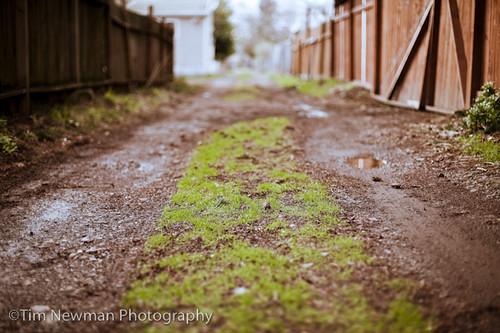 SE Portland Photo Walk