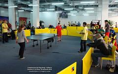 24 Ianuarie 2010 » Campionatul de Ping-Pong Galleria