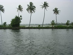 Kumarakom (Aji .) Tags: lake nature river nikon stream houseboat kerala coolpix streams ajish backwater kumarakom godsowncountry streamsandrivers