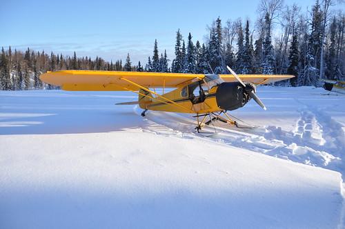 Week 11 - 52 Weeks - Alaskan Style