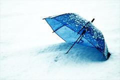 (Lorena Gazzotti) Tags: blue snow umbrella transparence specialpicture quotidiae artofimages saariysqualitypictures bestcapturesaoi elitegalleryaoi