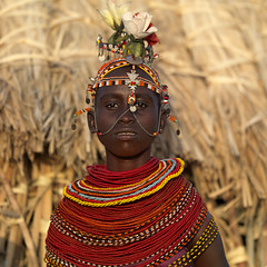 Ready for wedding - Kenya (Eric Lafforgue) Tags: africa girl kenya culture tribal tribes afrika tradition tribe ethnic kenia tribo afrique ethnology tribu qunia lafforgue ethnie rendille  qunia    kea   02402 a