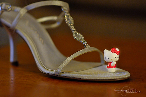 Hello Kitty - 40/365 Photo