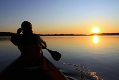 Being in river. (deanspic) Tags: sunset sun reflection water silhouette paddle canoe binary canoeing paddling cpl 50d photopaddle panoramafotográfico