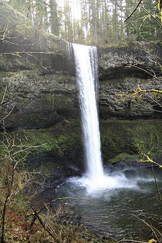 Silver Falls State Park 022 copy