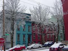 DSC08777 (markstemp58) Tags: snowfall albanyny feb162010