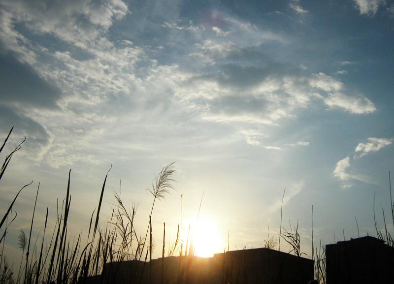 chasing sunset (3)