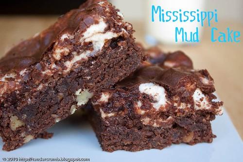 TENDER CRUMB: Mississippi Mud Cake (TCS)
