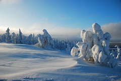 I love Finland (unlimited inspirations) Tags: world travel blue trees winter vacation sky white snow mountains art ice nature beautiful beauty monster pine clouds finland landscape lights nikon scenery europe flickr colours view angle earth top north shapes best arctic fantasy imagination colourful wonderland attractions amethystmine sunlights pineforests luosto lapand nikond80 unlimitedinspirations tripleniceshot mygearandmesilver mygearandmegold mygearandmeplatinum mygearandmediamond mygearandmeplatinium flickrstruereflection1 flickrstruereflection2 flickrstruereflection3 flickrstruereflection4 4timesasnice 6timesasnice 5timesasnice 7timesasnice rememberthatmomentlevel4 rememberthatmomentlevel1 magicmomentsinyourlifelevel2 magicmomentsinyourlifelevel1 rememberthatmomentlevel2 rememberthatmomentlevel3 magicmomentsinyourlifelevel3 magicmomentsinyourlifelevel4 rememberthatmomentlevel7 rememberthatmomentlevel9 rememberthatmomentlevel5 rememberthatmomentlevel6 rememberthatmomentlevel8 vigilantphotographersunite vpu2
