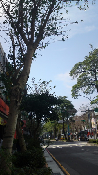 分享 Satio 手機街拍