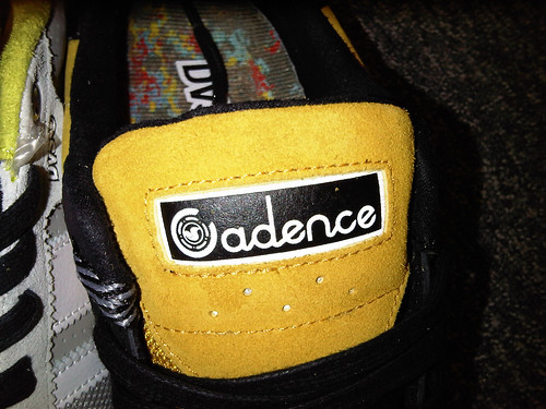 cadence×DVS