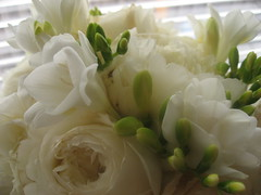 Mar 1, Wedding Boquet (mother holda) Tags: white flower whiteflower blind boquet levelor project365