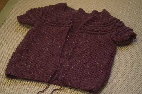 Helleborus Yoke sweater in progress
