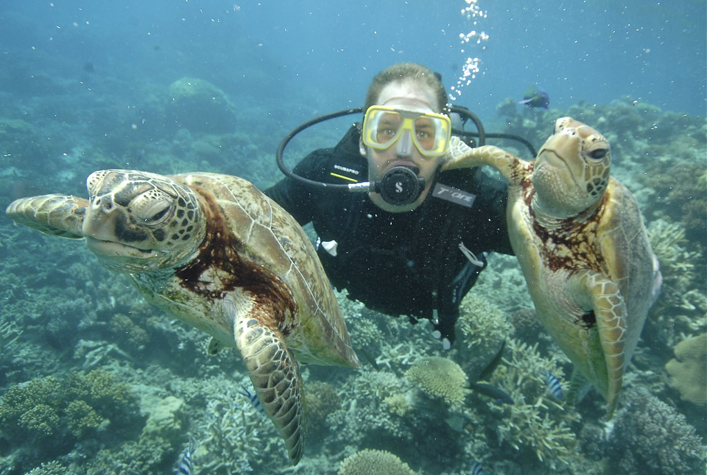 11. Brian diving with Turtles
