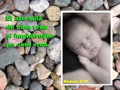 Romani 09-18 (Palosi Marton) Tags: kids childrens copii crestine versete biblice