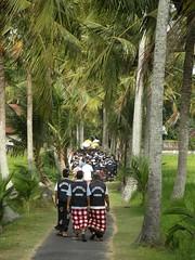 780 Bali - Ubud - Celebration (PACO POMARES) Tags: travel beach indonesia ubud munduk
