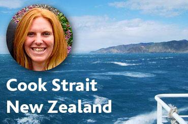 Cook-strait-header
