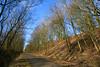 The cycle track near Lochwinnoch