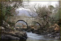 The Old Weir Bridge Killarney Co. Kerry (Viv Buckley Little bib) Tags: bridge ireland stream challengeyouwinner flickrchallengegroup flickrchallengewinner flickrchallengegroupwinner thechallengegame challengegamewinner challengegamegroup killarney17thmarch10 rainbowelite