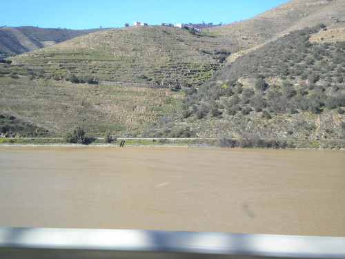 Douro river with a golden / brown / yellow color