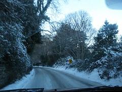 Snowy January spin