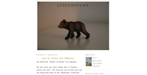 screenshot litenbjoern Blog