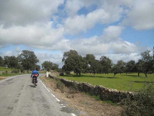 Camino de Torrecampo por la dehesa