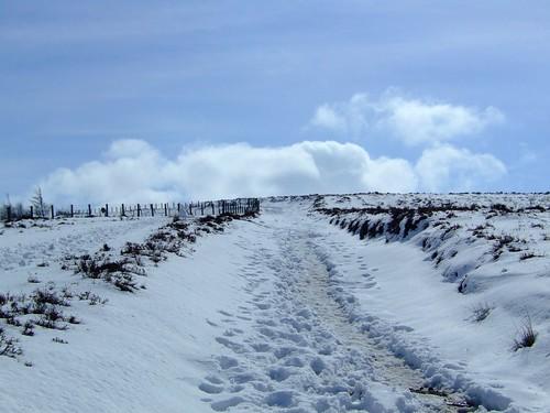 snowy Pentlands 07