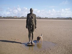 Another Place - April 2010 026 (a1vicster) Tags: antonygormley anotherplace
