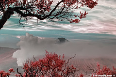Peak of Semeru (Infrared) (2121studio) Tags: nature indonesia artwork nikon d70s ali malaysia paintingwithlight framing worldcup indah shakira kuantan melayu alam erupting renewableenergy mountbromo exploreinteresting malaysianphotographer wakawaka meganfox visualartist jatim indonesianvolcanoes topimage imageforsale 2121studio karyaseni visitindonesia kuantanphotographer pahangphotographer alexmccord ciptaanallahswt obyekwisata gununggunungberapiindonesia 0139342121 1malaysia gambaruntukdijual lukisanalam indonesiapopulartouristspot nintendo3ds bestamazingwonderful beautifulcantik probolingojawatimur fascinatingindonesia bromotenggersemurunationalpark bromoijensurabayatravel2010 smokingmountbromo photographerdreamspot gunungbromomahumeletup