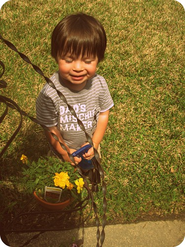 ryder watering flowers