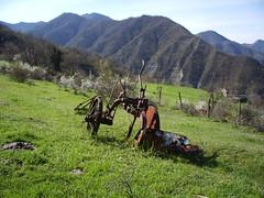 IMGP0138 (gzammarchi) Tags: italia natura campagna paesaggio collina aratro cose camminata attrezzo itinerario rapezzo firenzuolafi