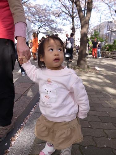 [1Y5M1D] Genki @ 京都