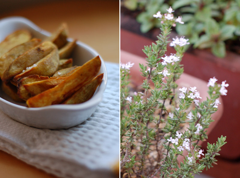 Sweet potato chips + Thyme flowers
