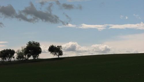 Murgia, scorcio panoramico