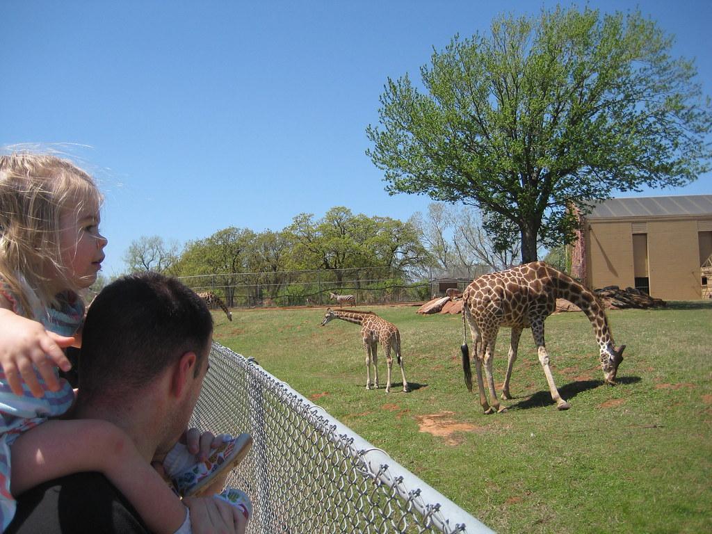 OKC Zoo 2010