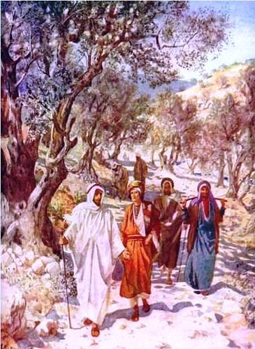 Camino de Caná