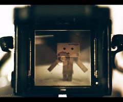 Nerd through Mamiya lense (moobelle*) Tags: camera mamiya nerd danbo c330 amazoncojp revoltech