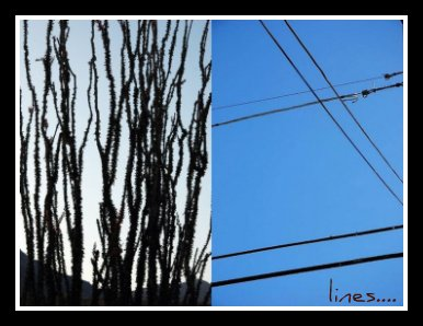 Diptychs-lines