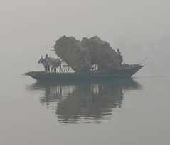 Straw Transport on a misty Morning on Bhagirathi River, West Bengal (Sekitar) Tags: morning india west water misty fog river grey cow boat transport straw load reflexion bengal refection bhagirathi sekitar earthasia sekitar