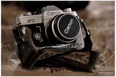 canon (jovedych3) Tags: oldcamera canonft nikon50mmf14