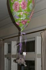 Balloonist