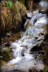 Vintage Champagne (Dave Hilditch Photography) Tags: water john searchthebest champagne somerset rivers streams soe forests brooks exmoor wonderworld tmba dragondaggerphoto yourwonderland magicunicornverybest magicunicornmasterpiece trolledproud