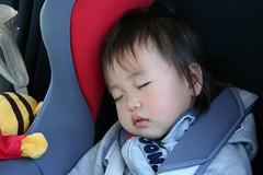 遊び疲れたので寝ます