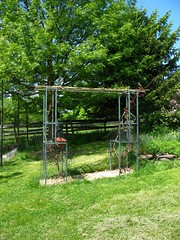 grape arbor, newly built