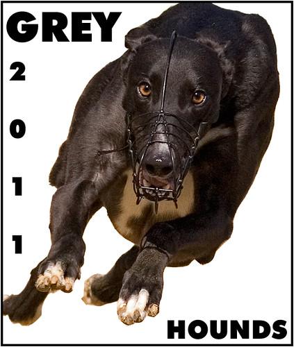 Greyhounds 2011