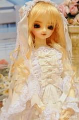 DollsParty23-DSC_5069